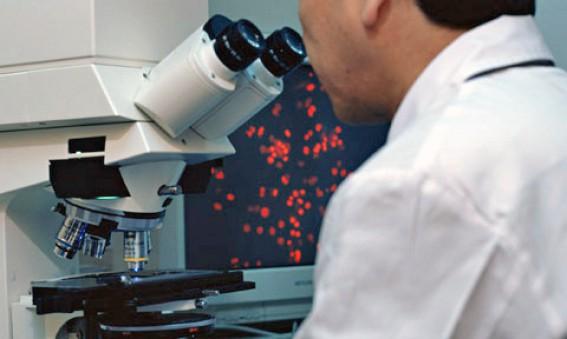 Bioanalista - CEyDES
