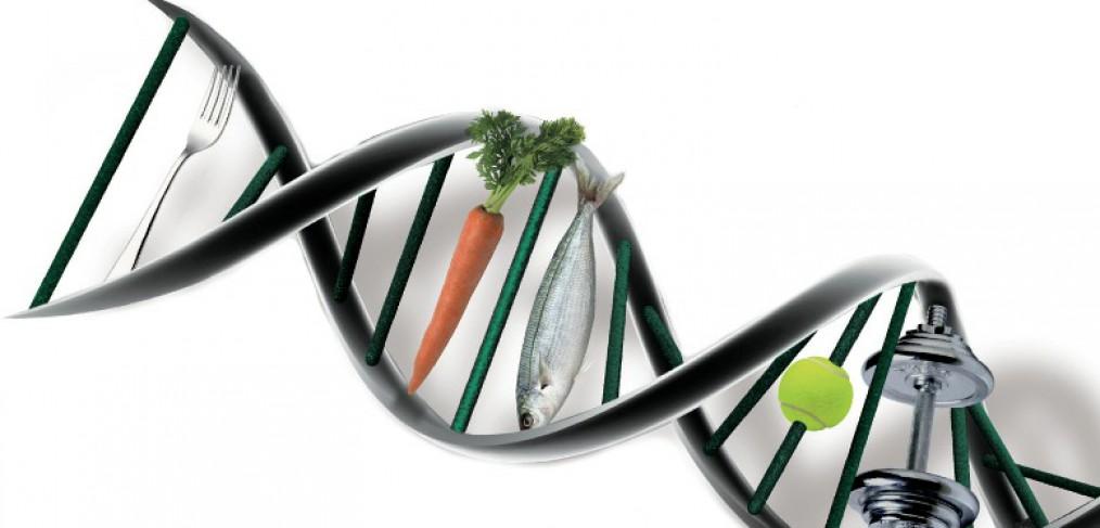 La nutrigenética estudia la relación entre los genes y la respuesta individual a la dieta