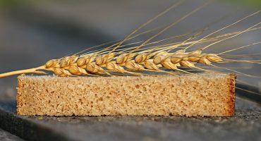 Todo lo que debes saber sobre el gluten