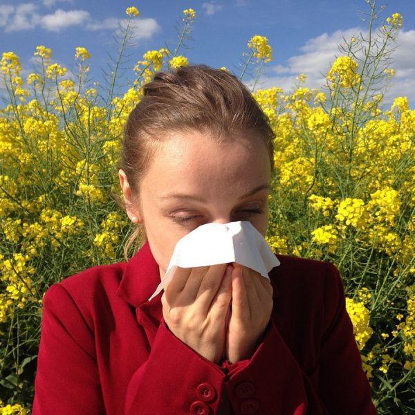 Test de diagnóstico múltiples alergias